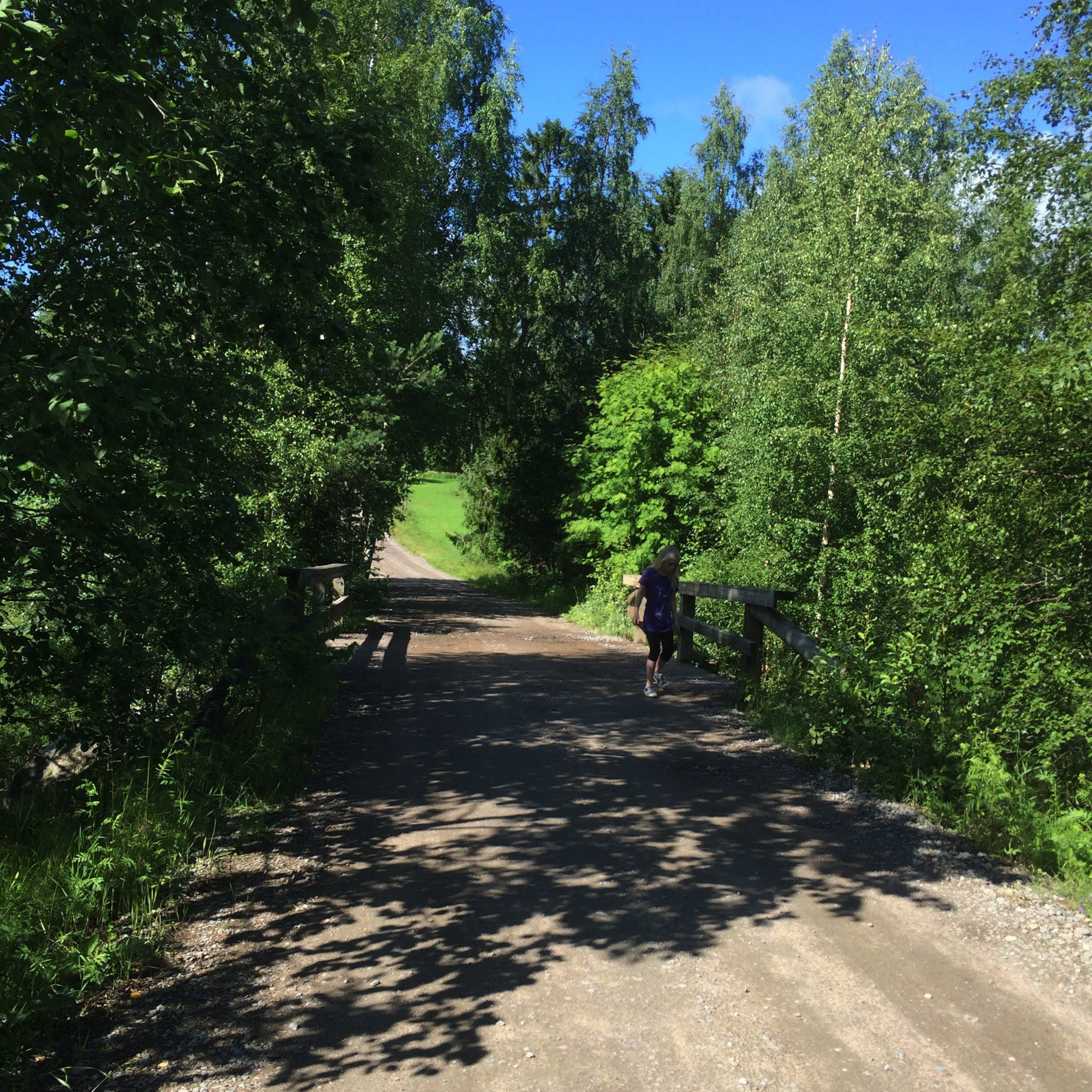Summer photo of a dirt road, small wooden bridge and plenty of trees