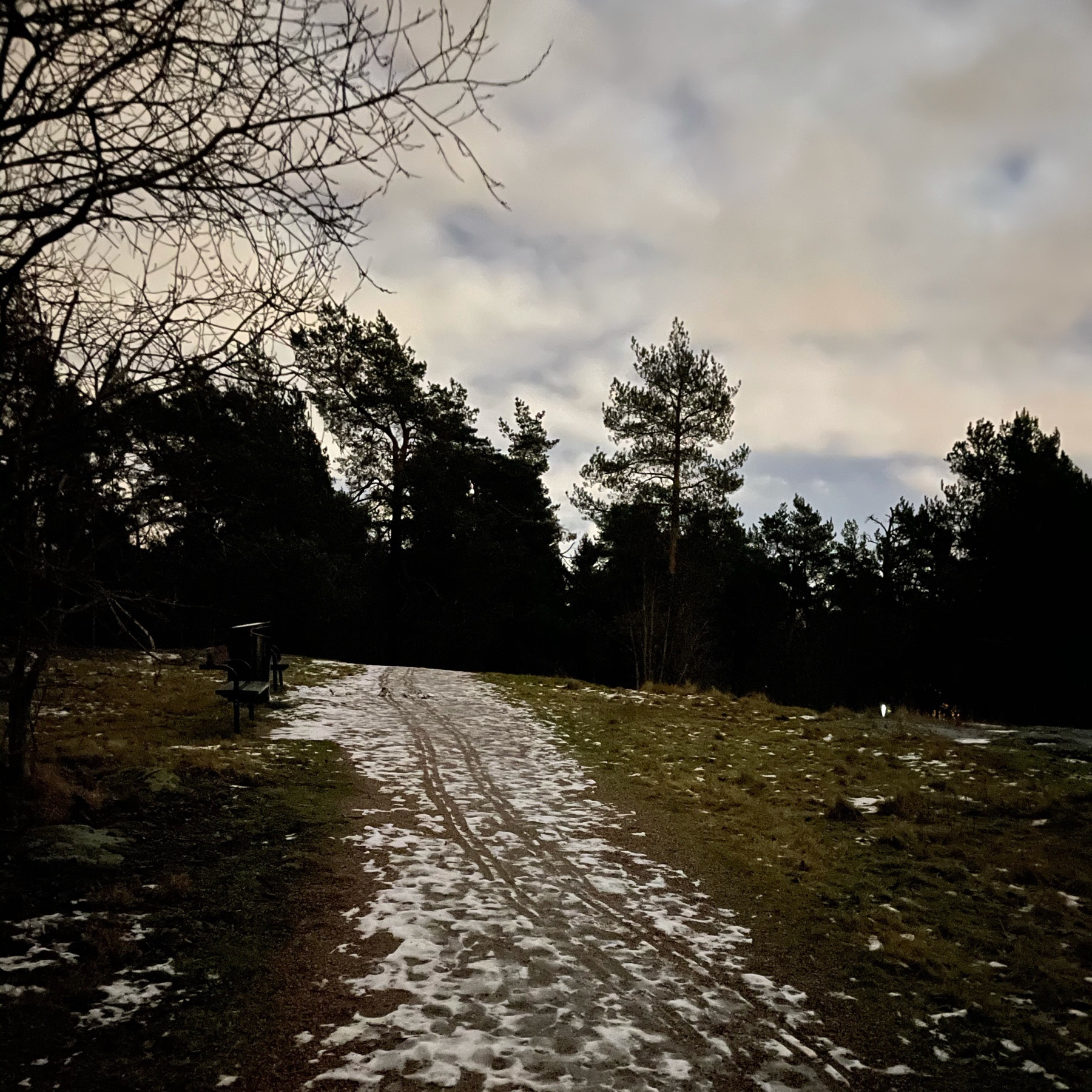 path through forest, gravel, rocks and some snow