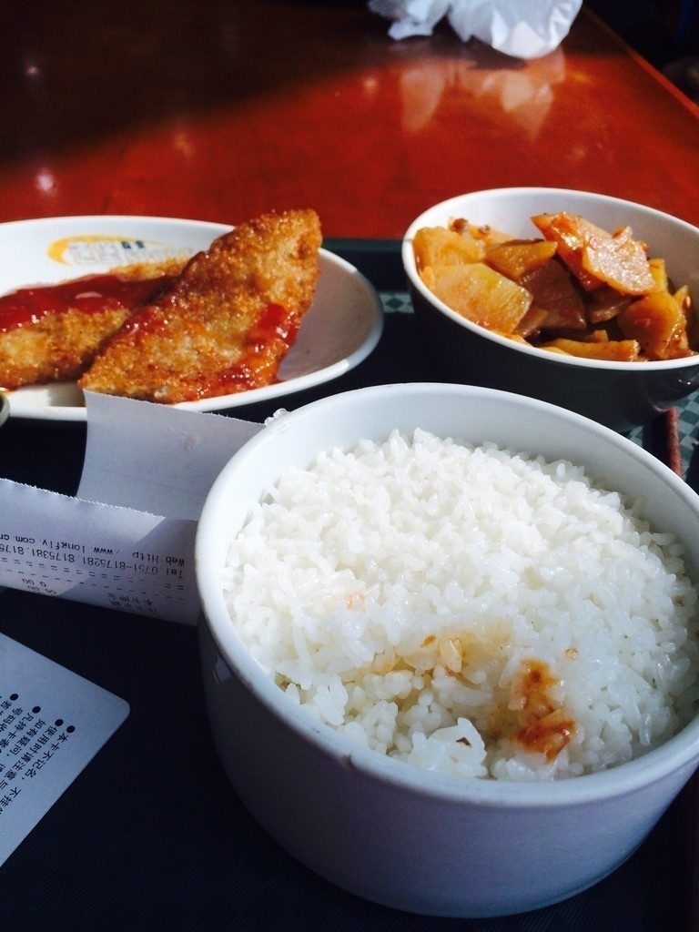 rice and chicken in bowls
