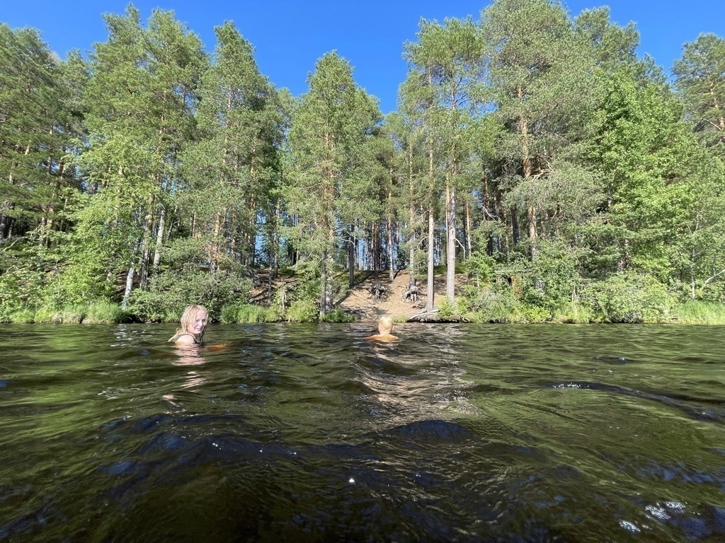 swimmers in lake, pine trees and a hill