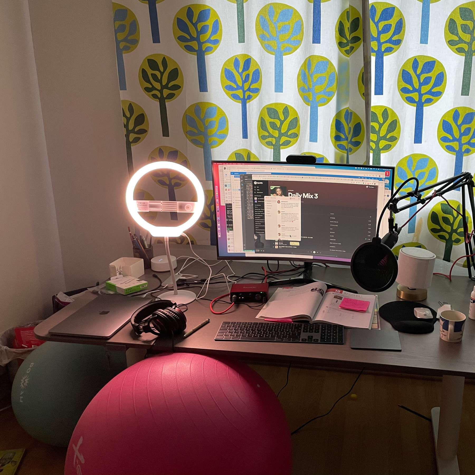 pink ball as a seat, computer desk, assorted computing stuff, microphone and a textbook